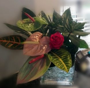 How To Improve Your Office Ambience With Flowers