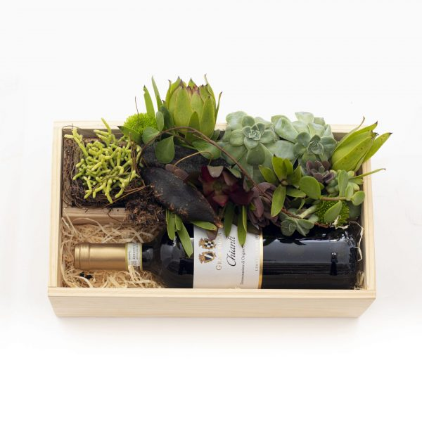 Wine and Succulent Gift with imported red wine and a succulent arrangement.